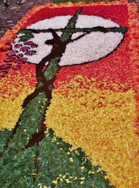 Madère fête des fleurs portugal