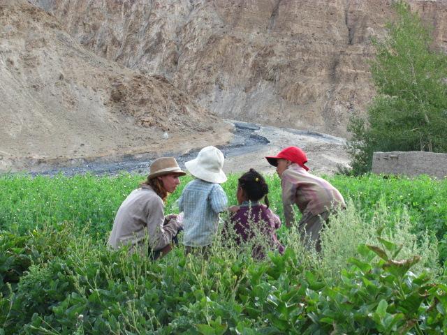 Ladakh Vallée de la Markha