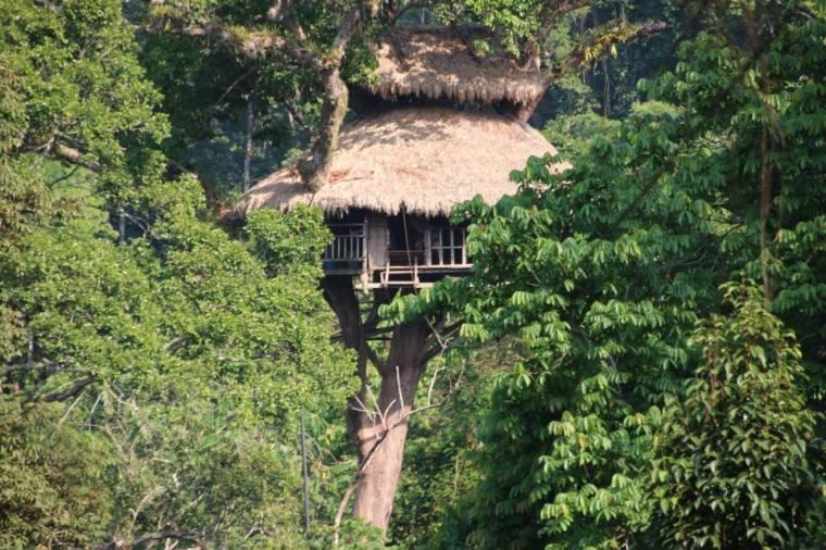 Cabane perchée Laos