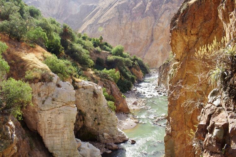Pérou Canyon de Colca
