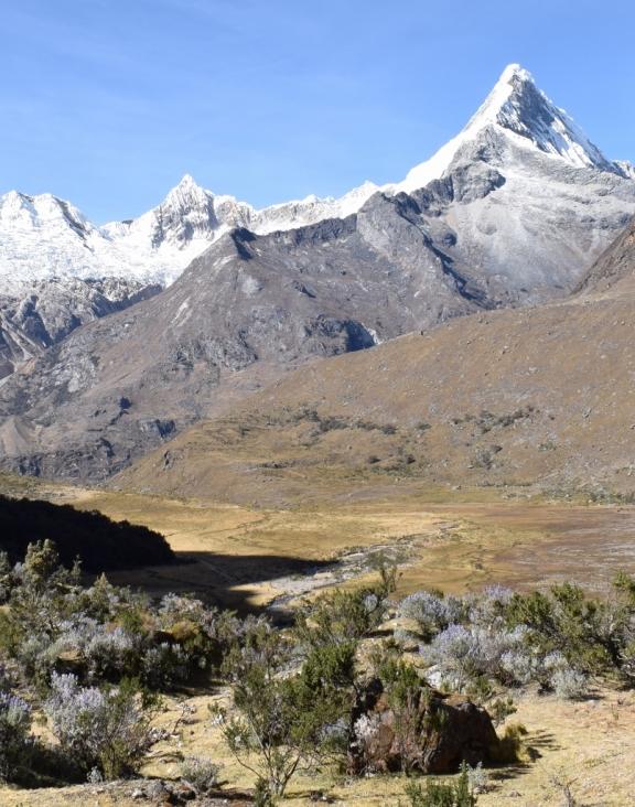 paysage trek santa cruz