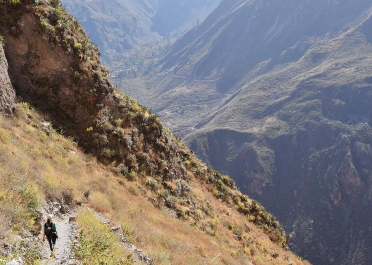 pérou trekking canyon de colca