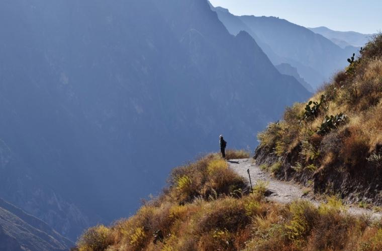 trekking canyon de colca pérou