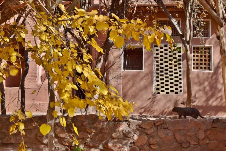 Iran Abyahneh village