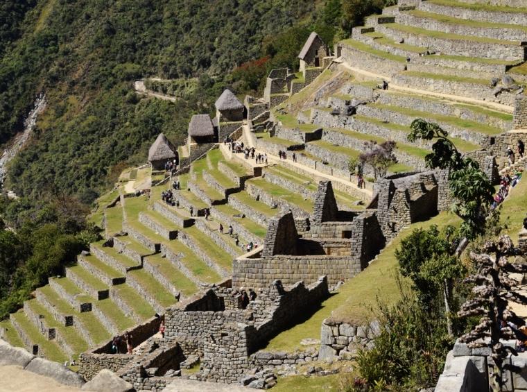 Quelques terrasses sur le site du Machu Picchu au Pérou