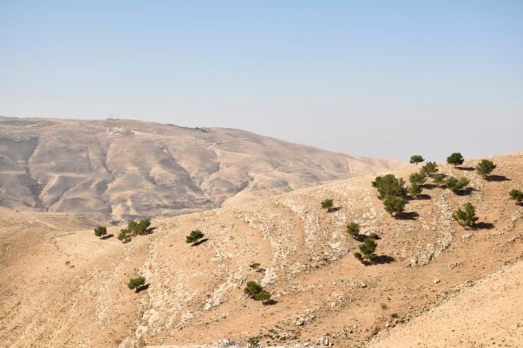 vue depuis le mont nebo jordanie